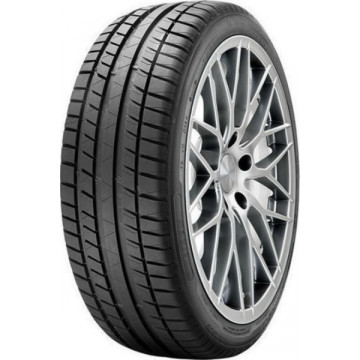 Riken ROAD PERFORMANCE 205/55/16 91W